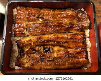 Charcoal grilled Unagi eel over rice or Japanese unagi donburi (unadon) rice recipe, famous street food of Narita, Chiba prefecture, Japan.