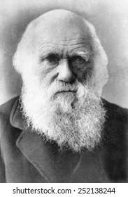 Charles Darwin (1809-1882), circa 1870s-1980s.