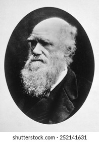 Charles Darwin (1809-1882), photo ca. 1880