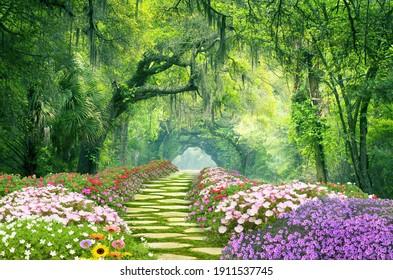 Charleston SC Dirt Road Forest Botany Bay Plantation Spanish Moss Edisto Island Deep South Live Oak Trees - Shutterstock ID 1911537745