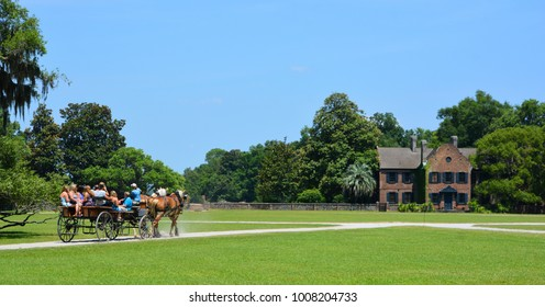 CHARLESTON SC USA JUNE 23 2016: Horse-drawn carriages at Middleton Place is a plantation in Dorchester County, directly across the Ashley River from North Charleston U.S. state of South Carolina