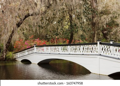 In Charleston, South Carolina, this white, wooden ornamental pedestrian bridge provides a romantic experience for visitors at Magnolia Garden Plantation in spring.