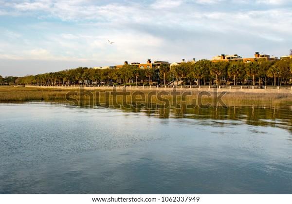 Charleston, South Carolina - Waterfront Park - early morning