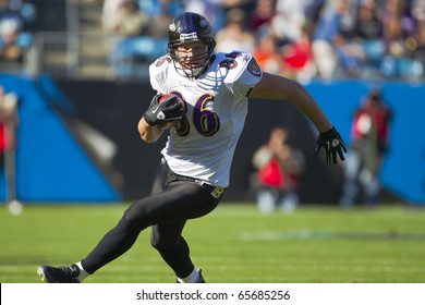 CHARLOTTE, NC - NOV 21:  Baltimore Ravens tight end Todd Heap runs for yardage as the Carolina Panthers play the Baltimore Ravens on Nov 21, 2010 at Bank of America Stadium in Charlotte, NC.