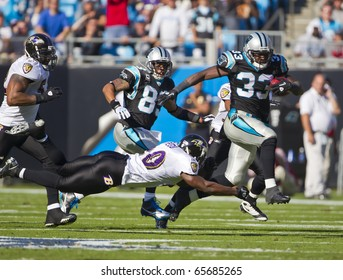 CHARLOTTE, NC - NOV 21:  The Carolina Panthers play host to the Baltimore Ravens on Nov 21, 2010 at Bank of America Stadium in Charlotte, NC.
