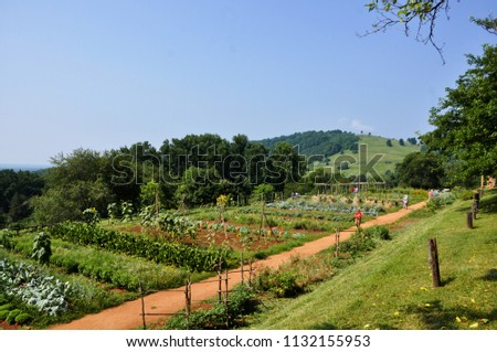 CHARLOTTESVILLE, VA – July 4, 2018 – View of the garden at Jefferson's Monticello in Charlottesville, Virginia.