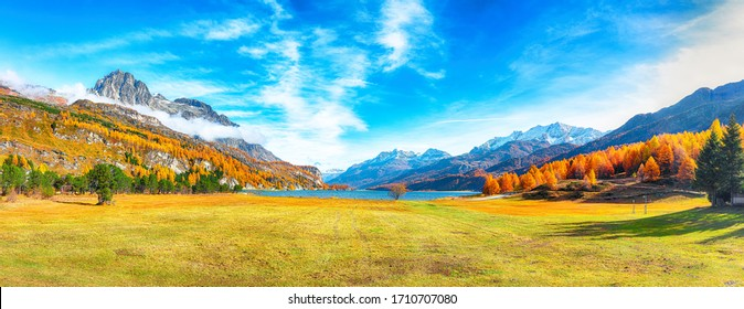 Charming autumn scene in Swiss Alps and views of Sils Lake (Silsersee). Colorful autumn scene of Swiss Alps. Location: Maloya, Engadine region, Grisons canton, Switzerland, Europe.