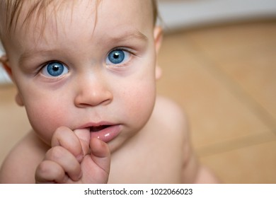 Charming baby with blue eyes. Close-up shot of infant baby with bright blue eyes sucking finger and looking at camera.