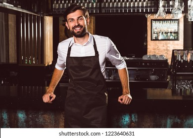 Charming barmen. Handsome young man in apron looking at camera with smile while standing at the bar counter