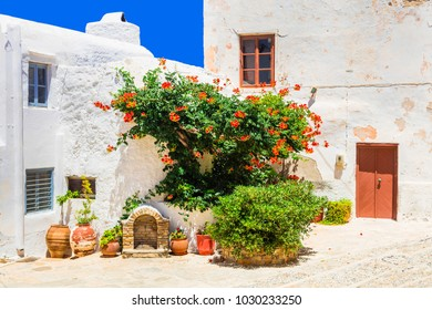 Charming floral streets of old town in Naxos island. Greece