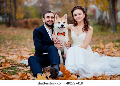 Charming happy wedding couple with cute husky