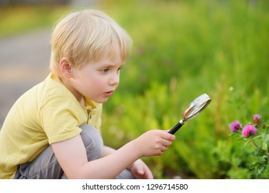 Charming kid exploring nature with magnifying glass. Little boy looking at tree with magnifier. Summer activity for inquisitive child