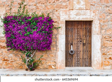 Charming mediterranean house with wooden front door and beautiful bougainvillea.