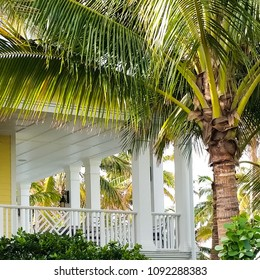 Charming Southern Veranda with Palm Tree Foliage in Naples, Florida