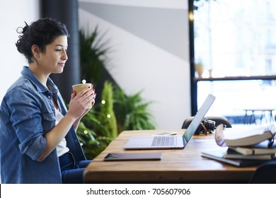 Charming student watching interesting webinar on computer while sitting indoors with coffee in hands.Attractive female enjoying beverage during reading news on laptop device via high speed internet