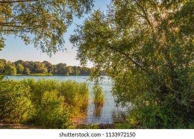 Charming view over a small Dutch lake between the branches of overhanging trees and shrubs. It's a warm summer evening and the sun is almost set.