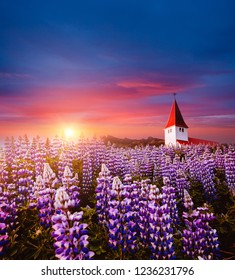 Charming view of Vikurkirkja christian church in evening light. Location place Vik i Myrdal village, Iceland, Europe. Scenic image of most popular tourist destination. Discover the beauty of earth.