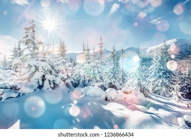 Charming winter landscape in the morning. Location Carpathian, Ukraine, Europe. Bokeh light effect. Instagram toning filter. Ski resort. Exotic wintry scene. Fabulous winter wallpaper. Happy New Year!