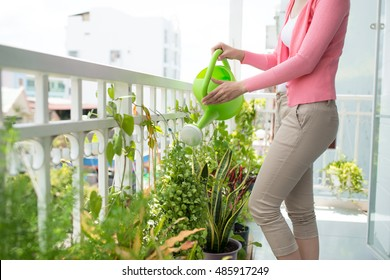 Charming Young Asian Woman Watering Plant In Container On Balcony Garden