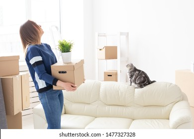 Charming young woman holds a box with things while moving while standing in a new apartment next to her gray lop-eared scottish cat. The concept of moving and housewarming.