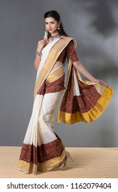 charming young woman wearing traditional saree, indoor lighting