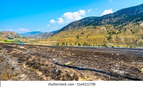 The charred landscape from a grass fire along the Thompson River and the Trans Canada Highway near Cache Creek in British Columbia, Canada