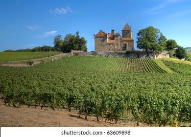 Chateau de Pierreclos among vineyards in Burgundy, France