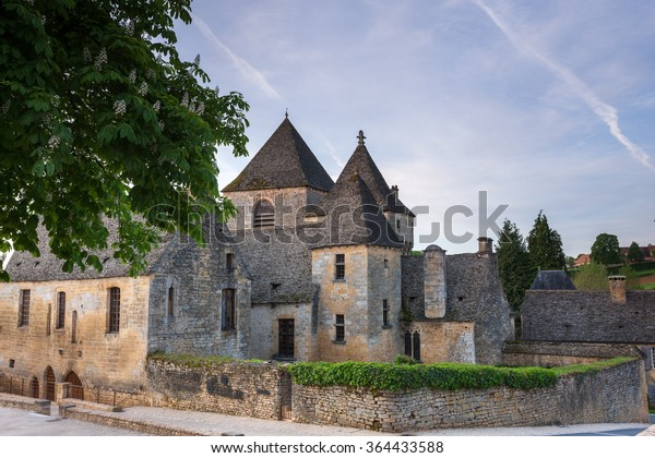 Chateau at St Genies Dordogne France