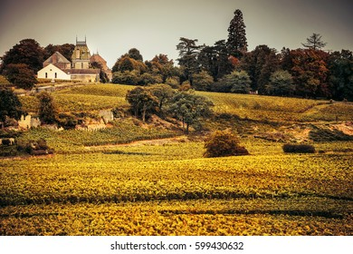 Chateau with vineyards, Burgundy, France (warm filter)