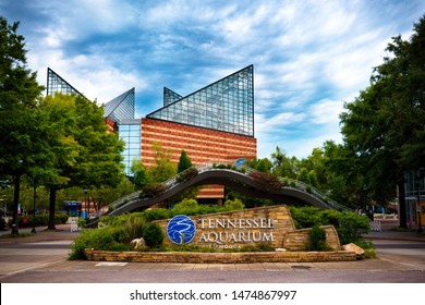 Chattanooga, TN - Aug. 9, 2019: Tennessee Aquarium in Chattanooga, TN, on Aug, 9, 2019. The aquarium is home to more than 12,000 animals representing almost 800 species