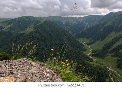 CHECHNYA, RUSSIA - JULY 05, 2016: Mountain canyon in Caucasus mountains on July 2016 in Chechnya, Russia