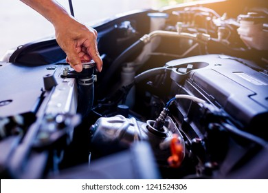 Check and maintenance the water in radiator car with yourself. Service and maintenance vehicle.