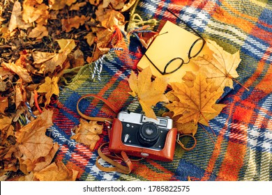 Checkered red and yellow plaid with fringe and autumn leaves, a book, glasses, and a camera. Autumn outdoor recreation concept