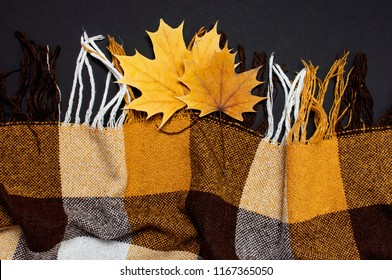 Checkered yellow brown plaid with fringe and autumn leaves on black background top view, copy space. Woolen checkered plaid. Autumn warm background.