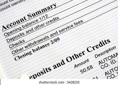 Checking Account Summary