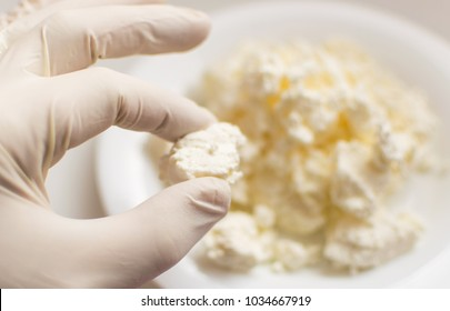 Checking the cottage cheese. A hand in a rubber glove holds cottage cheese. Study of the content of harmful substances.