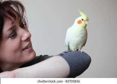 Cheeky Cockatiel parrot and woman