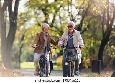 Fröhliches aktives Seniorenpaar mit Fahrrad im öffentlichen Park zusammen Spaß haben. Perfekte Aktivitäten für ältere Menschen. Frohes reiftes Pärchen mit Fahrrädern im Park