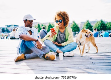 Cheerful afro american friends resting outdoors with pet sharing photos in networks via mobile, dark-skinned girl with curly hair blogging via smartphone sitting with boyfriend and cute puppy