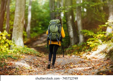 Cheerful brunette tourist girl wears orange jacket and backpacked have walk through forest, autumn tourism concept