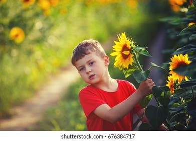 cheerful child playing in a field of sunflowers