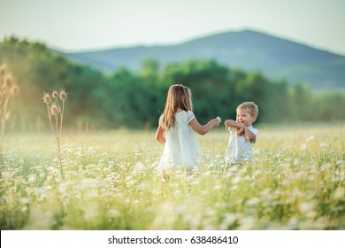 Cheerful children play in the field of blooming chamomile