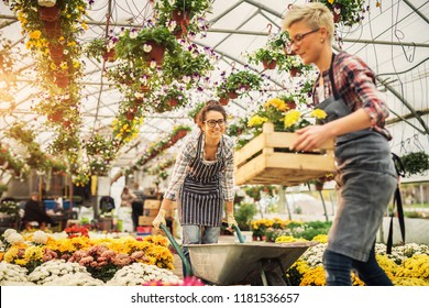 Cheerful florists reorganizing flowers pots in their greenhouse.