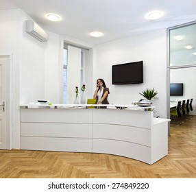 Cheerful front desk lady doing her job with passion. The black space on the TV-screen could be used for any logos, some label signs or any graphic additions.