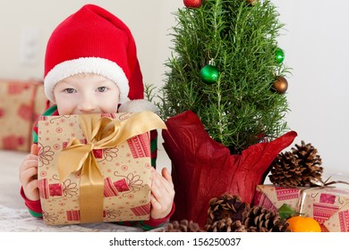 cheerful happy little boy holding his christmas present