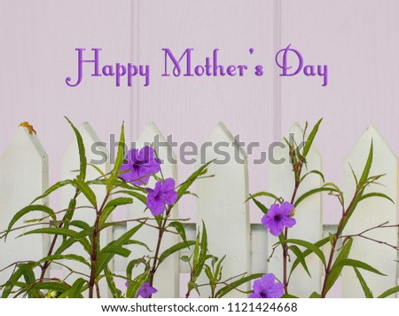 Cheerful Happy Mothers Day Greeting Picket Stock Photo Edit Now