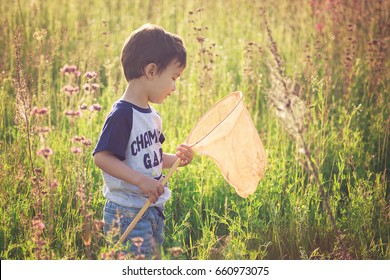 Cheerful kid playing in a field with Insect net in summer. butterfly net catch butterflies