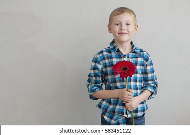 Cheerful little boy with flower as a gift