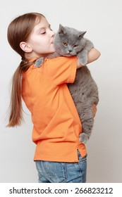 Cheerful little girl played with a British breed of cat