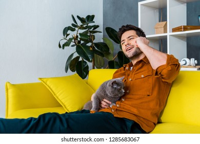 cheerful man talking on smartphone on sofa with grey cat